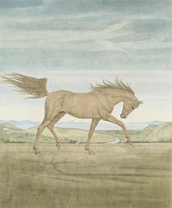 纸本国画Tuschmalerei, 56x96cm